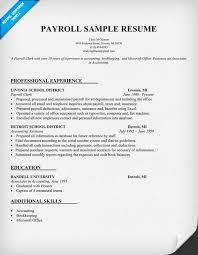 payroll cv sample