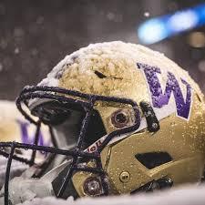 Univerdity Of Washington Huskies Godawgs Purplereign