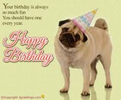Birthday wishes dog pictures ~ Birthday wishes dog pictures ~ Dog birthday wishes kappit