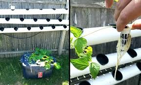homemade hydroponic growing systems outdoor hydroponics outdoor hydroponics outdoor hydroponics growing system homemade diy hydroponic growing