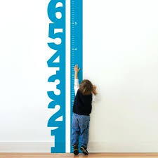 wall growth chart birds and branches wall decal growth chart wall decal canada