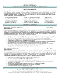 Bank Manager Resume Template Custom Branch Manager Resume Examples Of Resumes Shalomhouseus