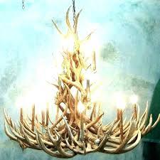 deer antler chandelier rustic deer antler 4 6 arms chandeliers