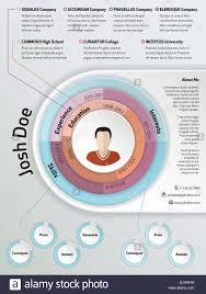 Cool Modern Curriculum Vitae Resume Design Stock Vector Art