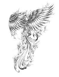 Image Result For Realistic Phoenix Bird Drawings Meaningful