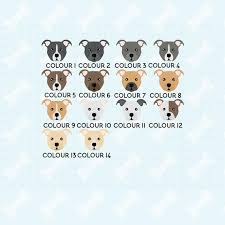 Staffy Colours Chart Staffie Mug Cute Mug Staffordshire Terrier Mug Staffy Mug Staffie Grandma Grandpa Grandad Staffy Gift Dog Dad Dog Mum