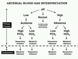 How To Interpret Blood Gas Results Faculty Of Medicine