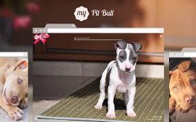 pitbull puppy wallpaper. Contemporary Puppy On Pitbull Puppy Wallpaper P