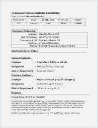 Resume Format 40 Year Experienced Software Engineer Resume Format Stunning Mysql Resume