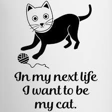 Want This Shirtde Sags Mit Deinem Shirt Katzenhalter Want To Be