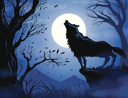 wolf howling. Wonderful Wolf Illustration Of Wolf Howling At The Moon In Wolf Howling O
