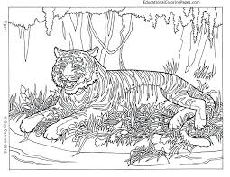 Hard To Color Coloring Pages Hard Colouring Pages To Print Difficult