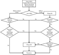 Intracranial Eeg Monitoring Neupsy Key