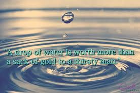Water Quotes Interesting 48 Best Save Water Slogans And Quotes With Poster And HD Images