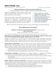 It Change Manager Resume Project Management Resume Examples Change