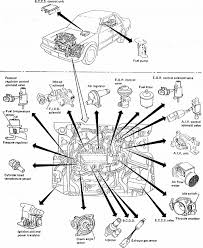 2001 hyundai sonata fuse box diagram on 2001 images free download Hyundai Entourage Fuse Box Diagram 2001 hyundai sonata fuse box diagram 16 2000 hyundai sonata fuse diagram 2006 hyundai santa fe fuse box diagram 2008 hyundai entourage fuse box diagram