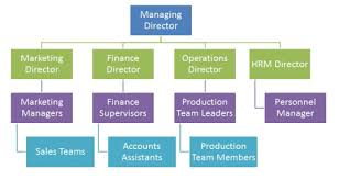 2 2 Organization And Management Igcse Aid