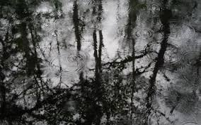 black and white rain wallpaper. Delighful Black HD Wallpaper  Background Image ID71843 Inside Black And White Rain