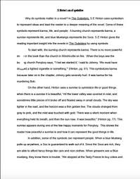 The Outsiders Book Report Essay Se Hinton Essay Business Plan For Nurse Staffing