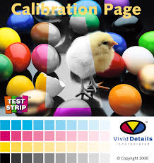 37 Color Test Page Print Color Printer Test Page Dark Brown Hairs