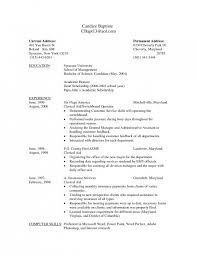 How Should A Resume Look Beauteous 28 Awesome What A Resume Should Look Like Tonyworldnet