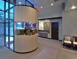 office fish tank. this tank makes a spectacular replacement for wall office fish