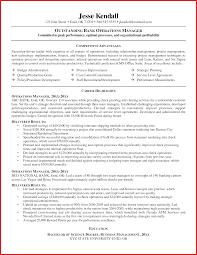 Area Of Expertise Examples For Resume Elegant Example Of A Resume resume pdf 41