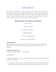 Cabin crew CV sample