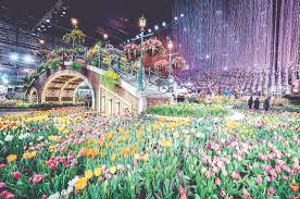 the 2017 philadelphia flower show theme was holland flowering the world