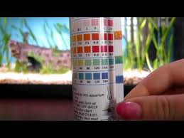 Tetra Test Strips Chart Help With Water Parameters Tested With Api 5 In 1 Test