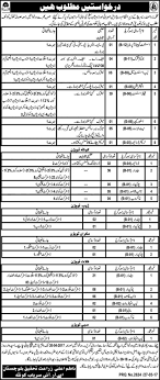 best ideas about teacher salary scale teacher jobs title latest jobs in agricultural research department balochistan jobs designation assistant computer operator