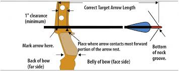 Recurve Draw Weight Chart Bow Weight Getting It Right Bahamas Archery