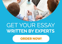 write my essay for me online or someone do my essay from experts