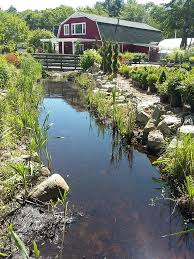 outdoor pride garden center 53 photos landscaping 261 central rd rye nh phone number yelp