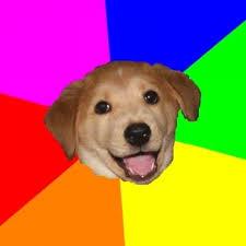 Advice Dog Meme Generator Imgflip