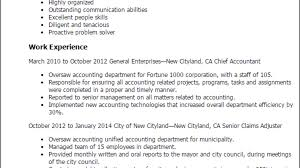 1 Chief Accountant Resume Templates Try Them Now