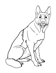 Small Picture New Coloring Pages Animals Holidays and More
