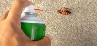 Pest Control Services, pest Treatment in Raigad   Pest Control Corp, Alibag
