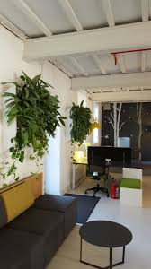 plants for office space. fine office improving the overall atmosphere of a corporate or retail space can be  accomplished in variety ways one those ways is to rent plants place  inside plants for office space