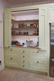 Kitchen Closet Pantry 25 Best Larder Cupboard Ideas On Pinterest Kitchen Larder