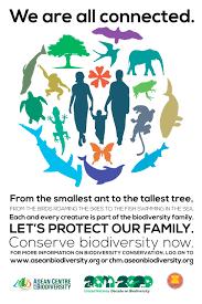acb poster jpg asean centre for biodiversity