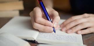 functional resume example web developer recent thesis sentences i will write your college essay for cash salon com metricer com
