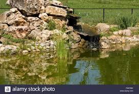 Artificial Pond Design Landscape Garden Design Little Artificial Waterfall On
