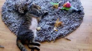 cat puzzle rug cat puzzle rug diy blitz blog