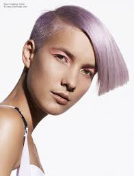 Hair Style Wedge short wedge haircut with a shimmering lavender hair color 2430 by stevesalt.us