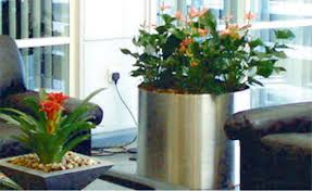 interior landscaping office. Office Sign Store Foliage Design Services Provide Professional Interior Plantscapes In Many Cities Throughout The U.S. Include Design, Landscaping
