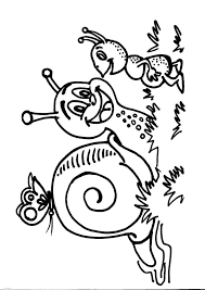 Disegno Lumaca Da Coloraredisegno Chiocciola Da Colorare