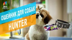 <b>Ошейник для собак Hunter</b> | Обзор <b>ошейника для собак Hunter</b>