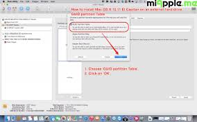How To Partition The Hard Drive Before Or During Lion Server