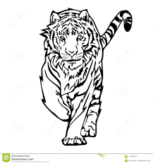 tiger drawing tattoo. Unique Tattoo Download Tiger Walk Silhouette Drawing Tattoo Stock Illustration   Of Design Animal 119970434 For